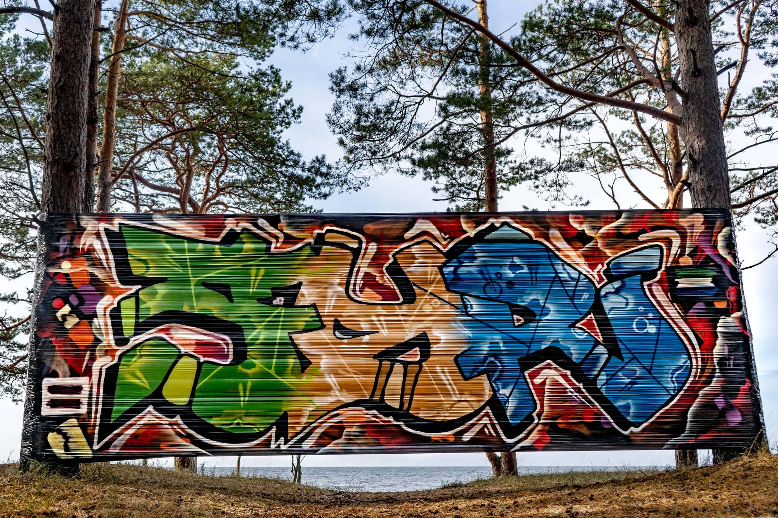 Jurd Saknes Roots Slider image 5