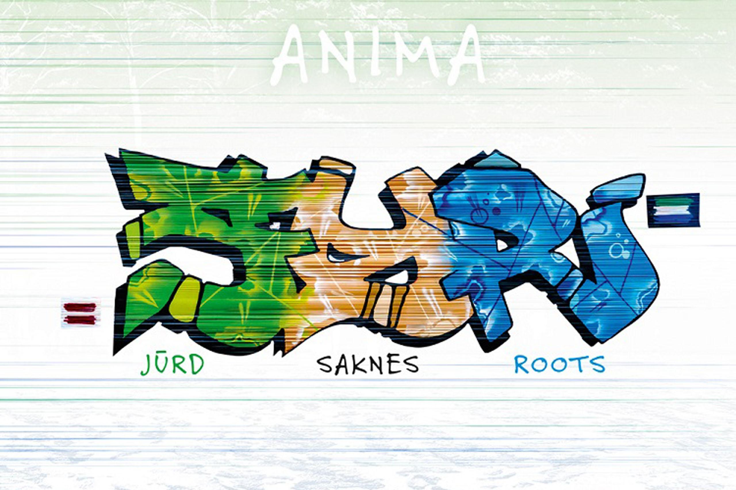 Jurd Saknes Roots Slider image 6